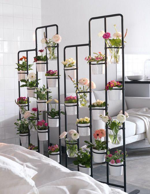ambientes florais